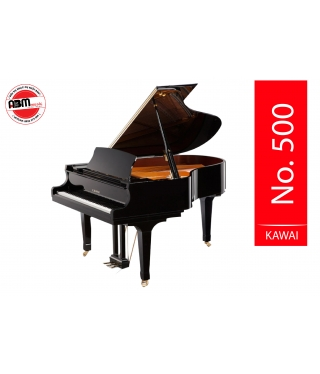Đàn Piano Grand No 500
